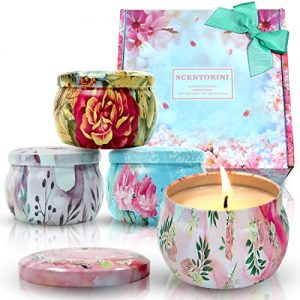 Scentorini Scented Candles Gift Set,Blush Peony, Cinnamon Apple
