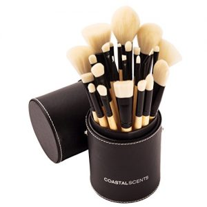 Coastal Scents Limited Edition Handcrafted Elite Make-Up Brush Set