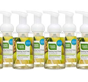 CleanWell Foaming Hand Soap with Botanical Oils - Ginger Bergamot Scent