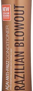 Brazilian Blowout Acai Anti Frizz Conditioner