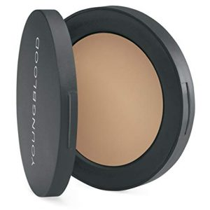 Youngblood Clean Luxury Cosmetics Ultimate Concealer