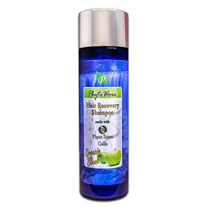 PhytoWorx Organic Hair Loss Shampoo | Color Safe with Plant Stem Cells