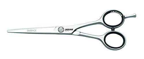 Jaguar Silver Ice 5.5 Inch Professional Hair Cutting Scissors/Shears