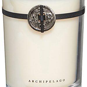 Archipelago Botanicals Pineapple Ginger Soy Candle