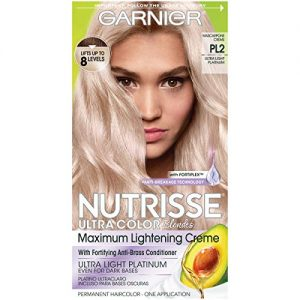Garnier Nutrisse Ultra Color Nourishing Hair Color Crème, Mascarpone Creme PL2 (1H19)